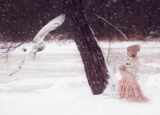 Gypsy's Corner Photography|Buffalo|WNY|Portrait Photographer|Winter Fairy Mini Sessions © 2016