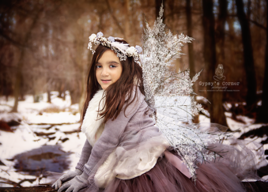 Little silver winter Pixie captured by © 2016 Gypsy's Corner Photography LLC