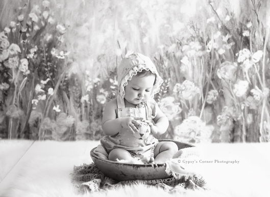 Buffalo Baby Photographer|9 Month session