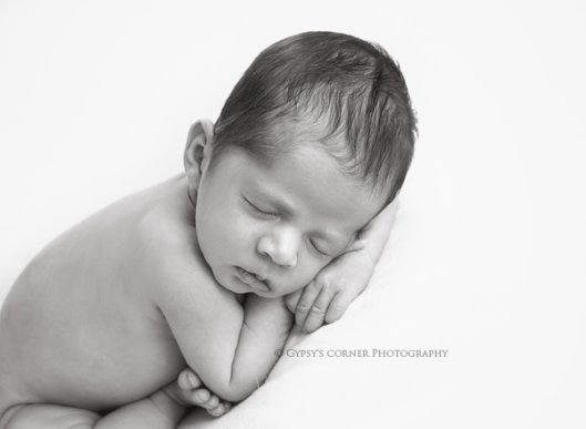 buffalo-ny-newborn-photographernewborn-boygypsys-corner-photography
