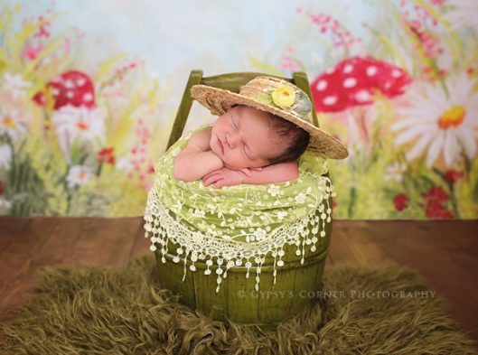 WNY Newborn Photographer| Favorite Newborn Sessions| www.gypsyscornerphotography.com