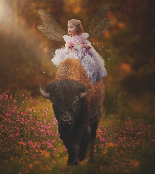 Buffalo Fairy Photography|Bison and Fairy|©Gypsy's Corner Photography
