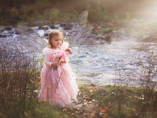 Williamsville NY Child Photography|Pink Fairy|©Gypsy's Corner Photography