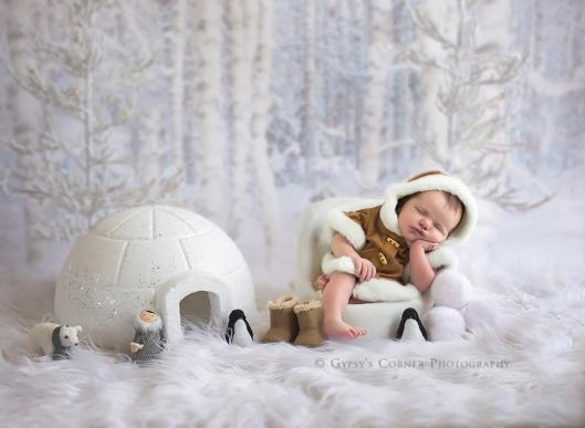 buffalo-baby-and-newborn-photography-igloo-gypsys-corner-photography-2