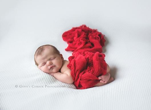 buffalo-new-york-newborn-photographer-gypsys-corner-photography-37