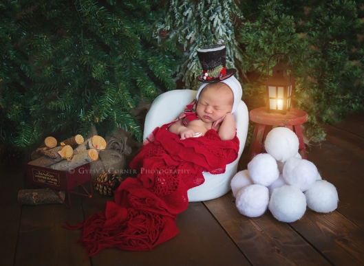 buffalo-ny-newborn-photography-gypsys-corner-photography