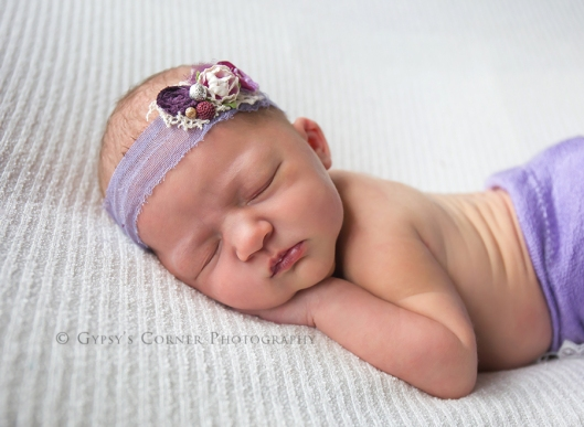 williamsville-ny-newborn-photographer-gypsys-corner-photography