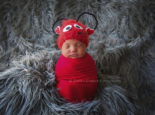 buffalo-cute-newborn-photography-gypsys-corner-photography-23