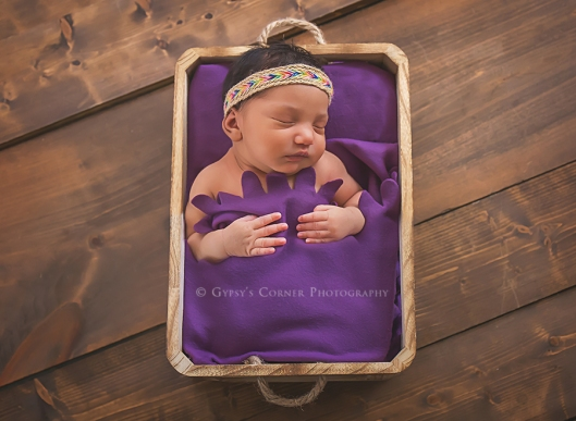 buffalo-ny-custom-newborn-photography-gypsys-corner-photography-72
