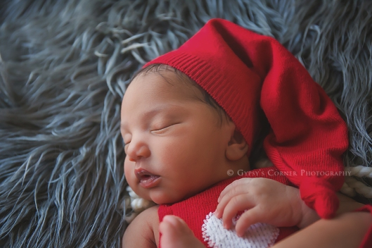 williamsville-amherst-lancaster-ny-newborn-photographer-gypsys-corner-photography-29