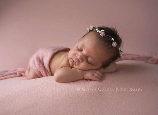best-buffalo-newborn-and-baby-photographer-newborn-baby-girl-gypsys-corner-photography