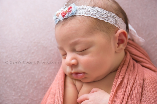 buffalo-best-newborn-photographer-gypsys-corner-photography