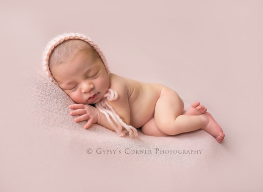 buffalo-best-newborn-photographer-gypsys-corner-photography-114web