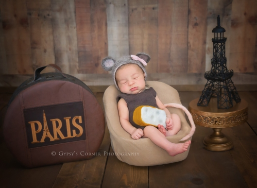 Buffalo Best Newborn Photographer | Gypsy's Corner Photography