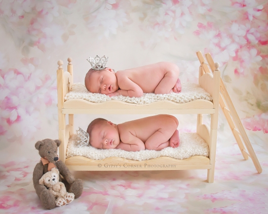 buffalo-twin-newborn-photographer-gypsys-corner-photography