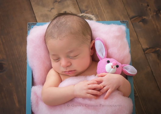 buffalo-newborn-photographergypsys-corner-photography-51web