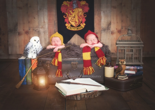Twin Newborn Harry Potter themed | WNY Newborn Photographer