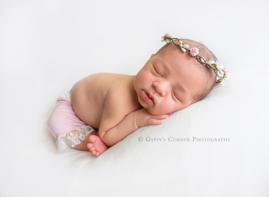 buffalo-ny-newborn-photographer-gypsys-corner-photography