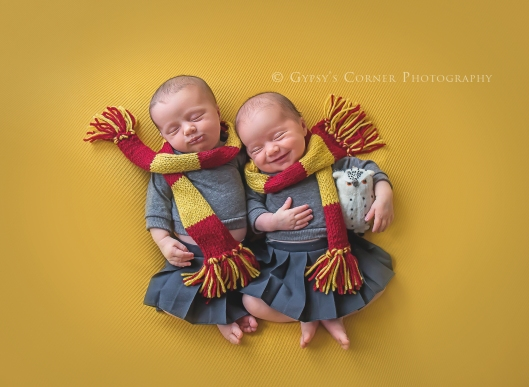 buffalo-twin-and-harry-potter-newborn-photographer-gypsys-corner-photography-73web