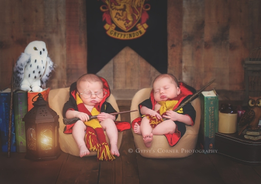 buffalo-twin-newborn-harry-potter-photographer-gypsys-corner-photography
