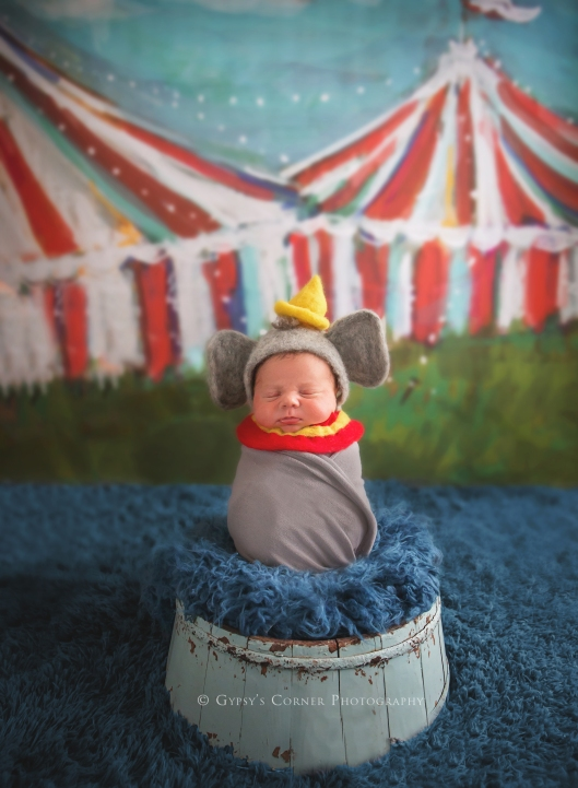 Buffalo and WNY Newborn Photographer | Baby Boy Dumbo |Gypsy's Corner Photography-36Web