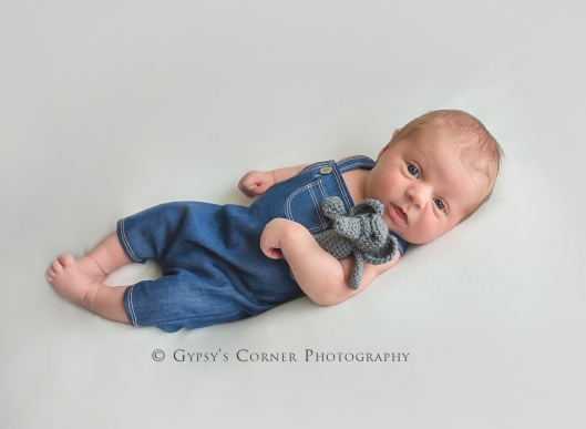 Buffalo Baby and Newborn Photographer | Newborn Boy |Gypsy's Corner Photography-67Web