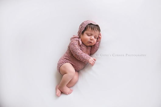 buffalo-best-newborn-phoographer-baby-girl-in-mauve-lace-gypsys-corner-photography-53web-copy