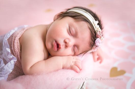 buffalo-newborn-and-baby-photographer-gypsys-corner-photography-6web-copy