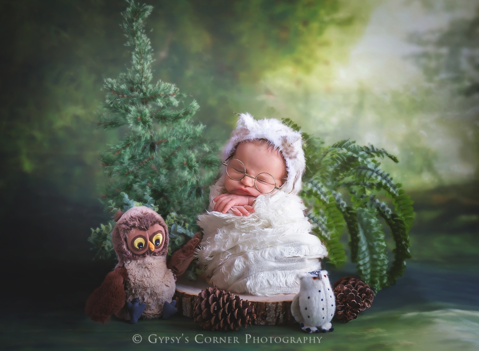 Buffalo Newborn and Baby photographer | Little Owls |Gypsy's Corner Photography