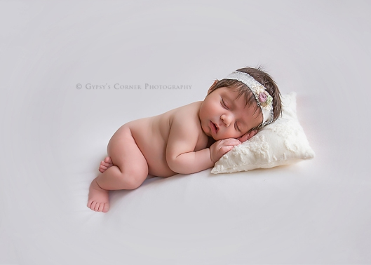 buffalo-ny-best-photographer-sweet-dreams-baby-girl-gypsys-corner-photography