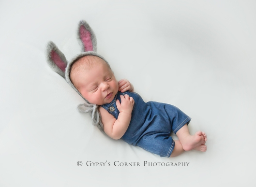 Buffalo NY Newborn and Baby Photographer | Sweet Bunny Boy |Gypsy's Corner Photography-72Web