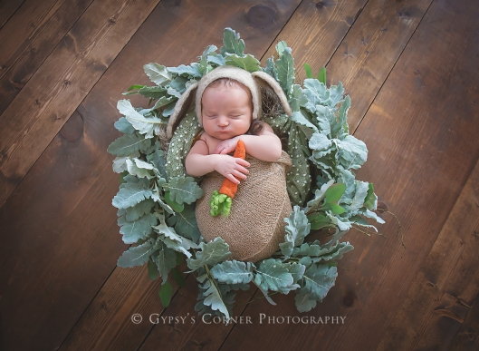 Bufffalo Newborn and Baby Photographer | Easter Bunny | Gypsy's Corner Photography-15Web
