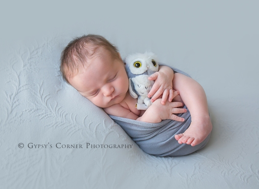 Bufffalo Newborn and Baby Photographer | Little Owl | Gypsy's Corner Photography-105Web