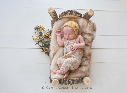WNY Buffalo Newborn and Baby photographer | Gypsy's Corner Photography-29Web
