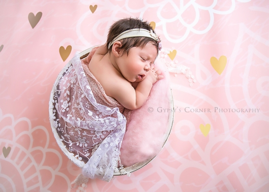 wny-buffalo-newborn-photographer-gypsys-corner-photography