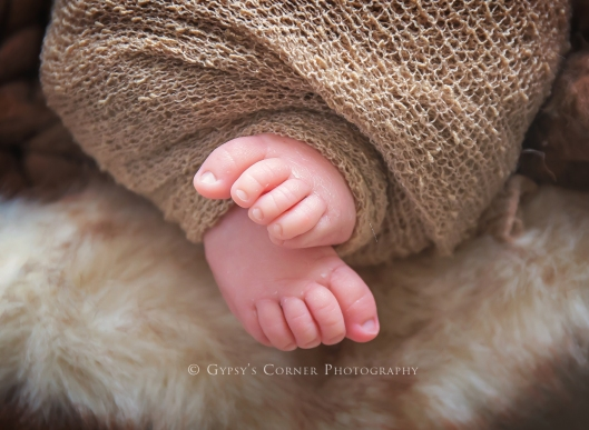WNY Newborn Photography | Baby toes |Gypsy's Corner Photography-26Web