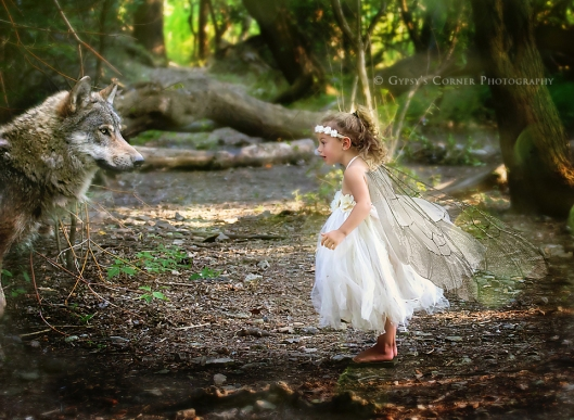 Buffalo and WNY Fairy and Children Photographer | Gypsy's Corner Photography 10