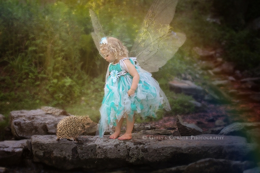 Buffalo and WNY Fairy and Children Photographer | Gypsy's Corner Photography 13