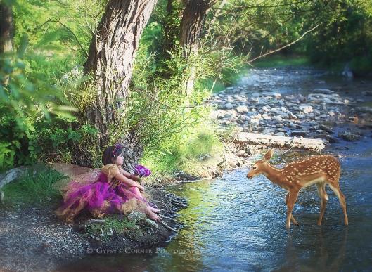 Buffalo and WNY Fairy and Children Photographer   Gypsy's Corner Photography 17