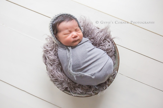 Buffalo Newborn Photographer| Baby Boy bundled in grey |Gypsy's Corner Photography