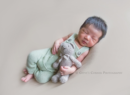 Buffalo Newborn Photographer| Baby Boy and his teddy bear |Gypsy's Corner Photography