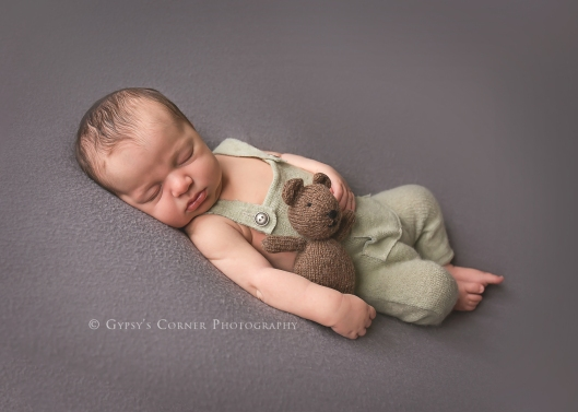 Buffalo Newborn Photographer| Baby Boy with Teddy Bear |Gypsy's Corner Photography