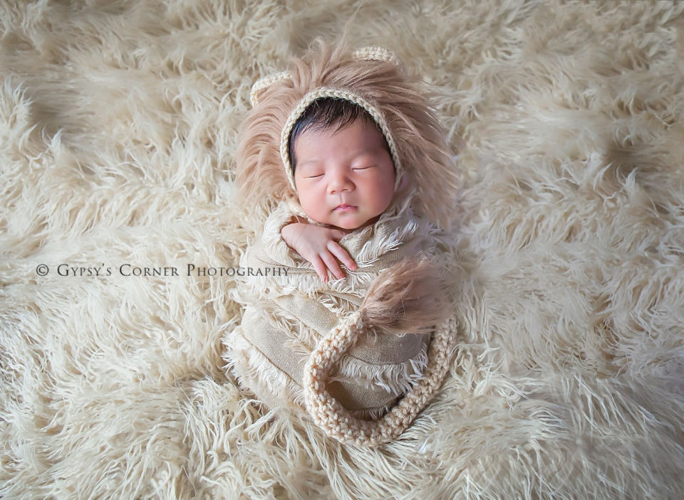 Buffalo Newborn Photographer| Little Lion |Gypsy's Corner Photography