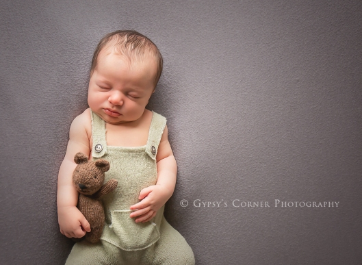 Buffalo Newborn Photographer| Me and Mr. Bear |Gypsy's Corner Photography