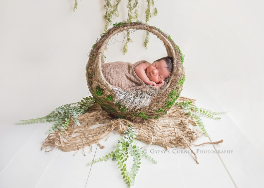 Buffalo Newborn Photographer| Natural newborn baby boy |Gypsy's Corner Photography