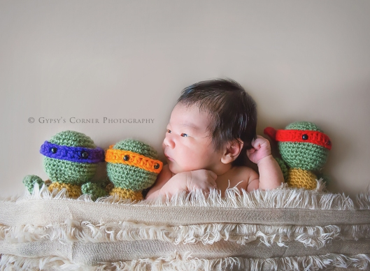 Buffalo Newborn Photographer| Newborn boy with Ninja Turtles |Gypsy's Corner Photography