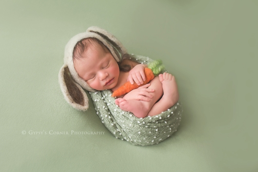 Buffalo Newborn Photographer|Baby boy Bunny and a carrot|Gypsy's Corner Photography-18Web