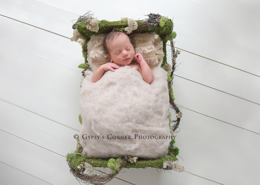 Buffalo Newborn Photographer|Baby boy in a mossbed|Gypsy's Corner Photography-131Web