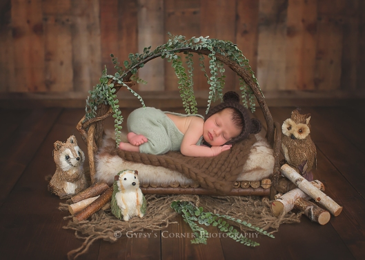 Buffalo Newborn Photographer|Baby boy Woodland|Gypsy's Corner Photography-68Web