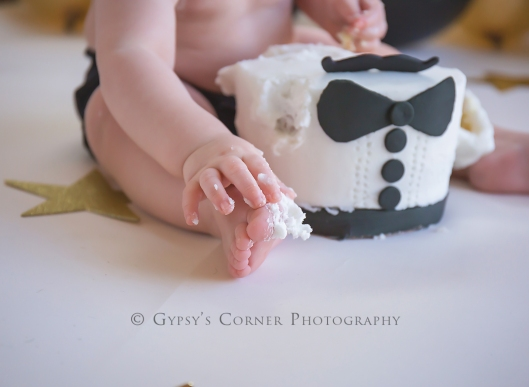Buffalo NY Cake Smash Photography|Gypsy's Corner Photography